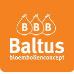Bloembollenconcept