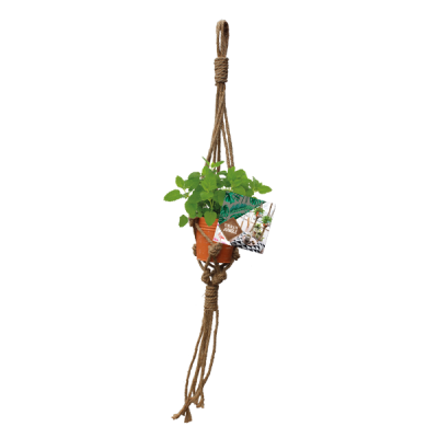 Urban Jungle Herbs Rope