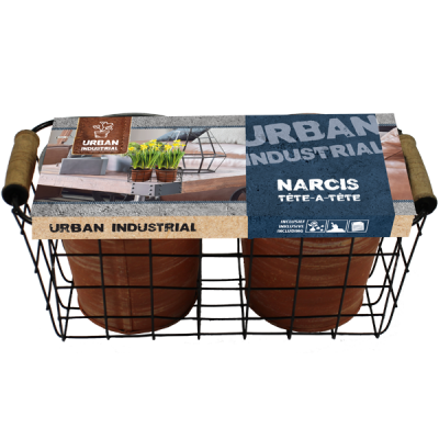Urban Industrial basket flower bulbs (2 pcs)